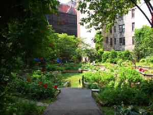 ny_westside_community_garden_89th_and_amsterdam_07_695.jpg